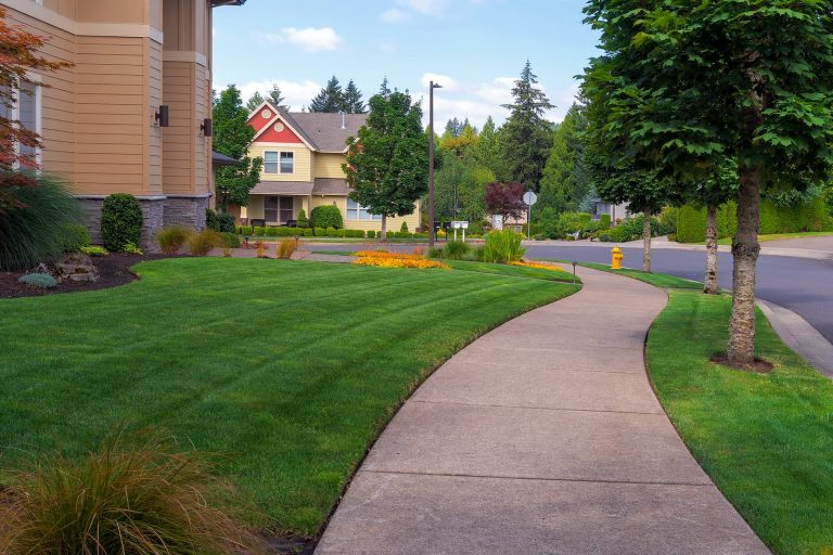 neighborhood sidewalks and walkways